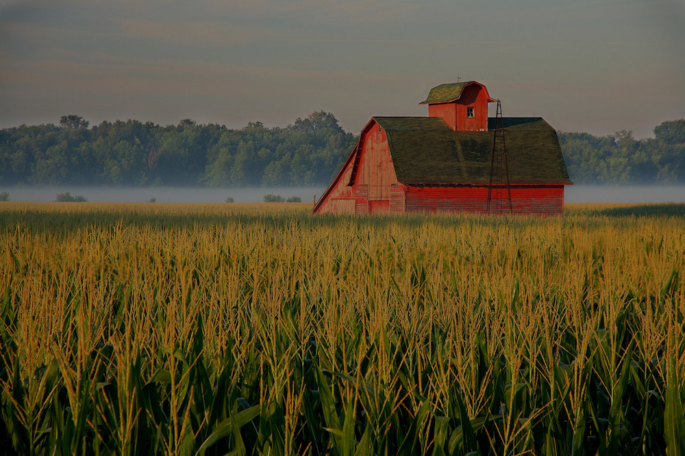 farm and crop insurance Salem MO